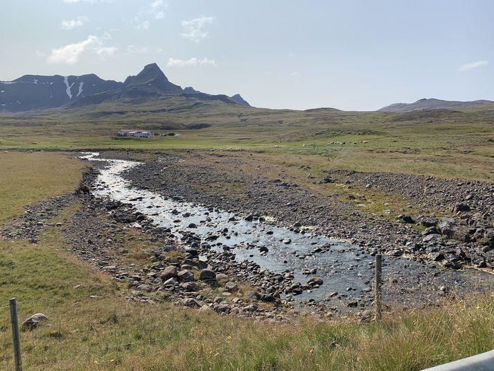 Eins og sést á myndinni er afskaplega lítið vatn í Hornsá.