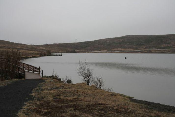 Bleikjan er farin a´taka í Vífilstaðavatni.