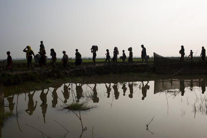Róhingjar hröktust frá heimkynnum sínum í Mjanmar og yfir til Bangladess eftir hernaðaraðgerðir mjanmarska hersins gegn þeim.