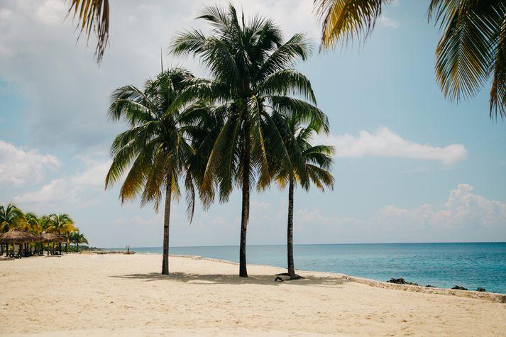Paradísarskjölin stafa meðal annars frá félögum á Bermúda og Singapúr.