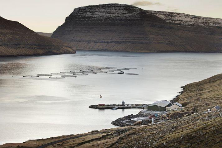 Bakkafrost hefur stundað sjókvíaeldi í Færeyjum í 40 ár. Myndin er frá Hvannasundi.