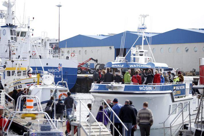 Ferðamenn í Reykjavíkurhöfn.