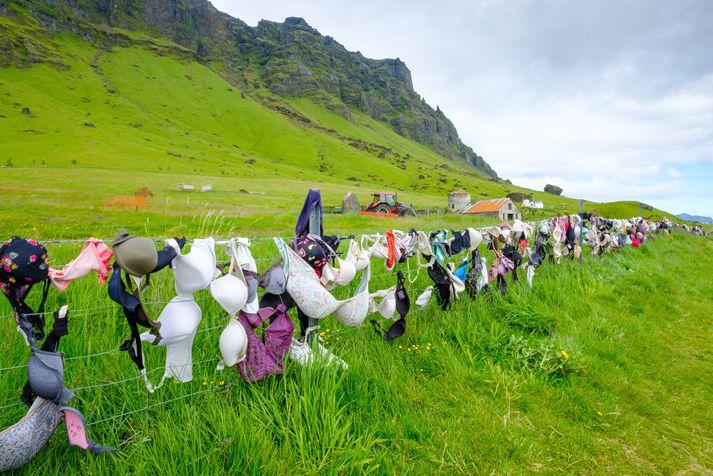 Það er enginn skortur á brjóstahöldurum við Brekkukot.