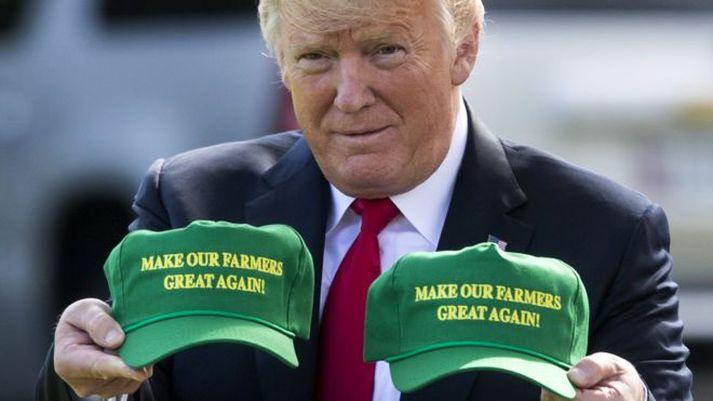Donald Trump hefur hrist upp í efnahagskerfi heimsins niðri.