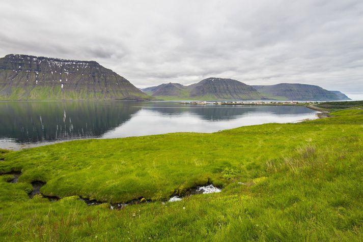 Flateyri stendur við Önundarfjörð á Vestfjörðum.