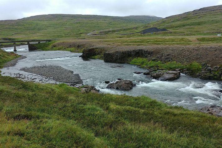 Jarðirnar eru allar í einu félagi og seljast sem slíkar. Félagið fer með meirihluta í veiðifélaginu á staðnum. Árið 2016 komu 311 laxar á land.