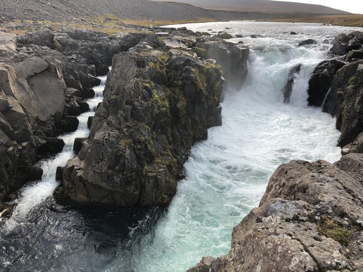 Laxastigi í Selá utan við Vopnafjörð.