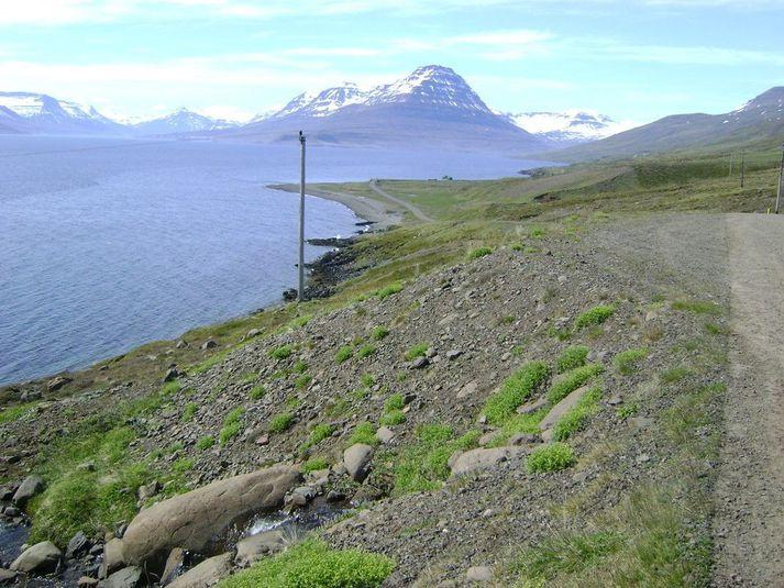 Helgustaðavegur út með Eskifirði milli Engjabakka og Högnastaða.