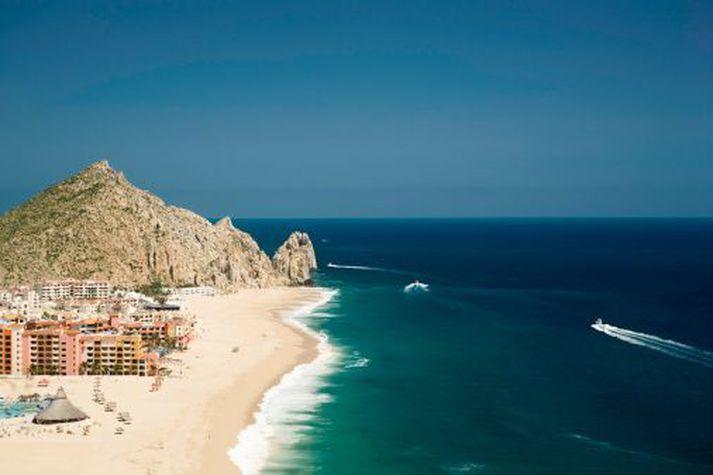 Frá Cabo San Lucas þar sem nemarnir fóru í frí.