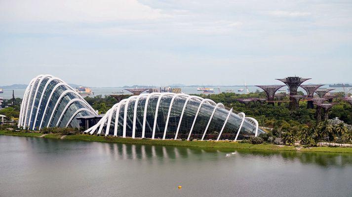 Arkitektastofan sem hannaði Gardens by the Bay í Singapore, sem er öllu stærra í sniðum, kemur að verkefni ALDIN Biodome.