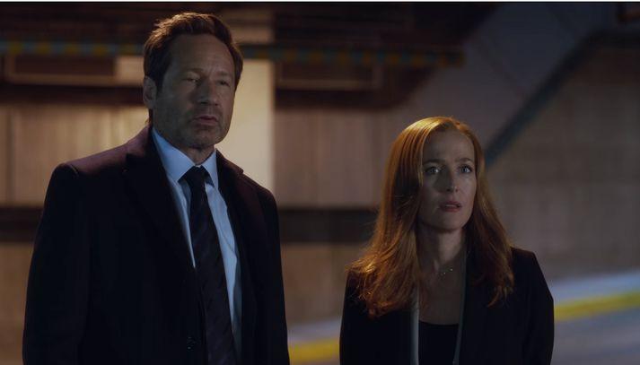 David Duchovny og Gillian Anderson í hlutverkum Fox Mulder og Dana Scully.