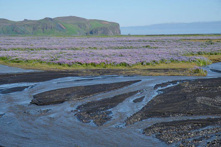 Ferðaþjónustuaðilar sem sinna ferðaþjónustu á eða við jökulinn hafa verið upplýstir.