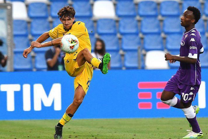 Andrea Gresele var farinn að banka á dyrnar hjá Hellas Verona.