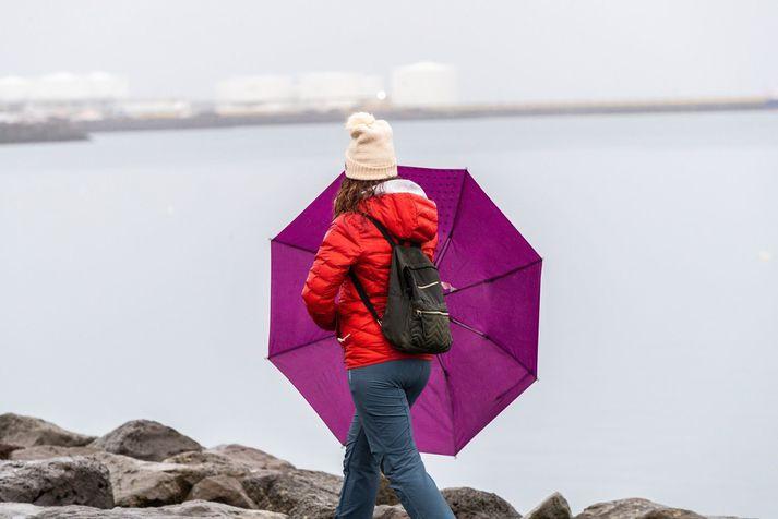 Hiti verður á bolinu núll til átta stig síðdegis, mildast við suðurströndina.