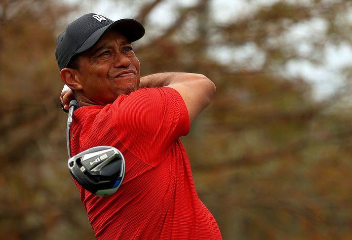 Tiger Woods er talinn heppinn að vera á lífi eftir bílslysið skelfilega á þriðjudag.