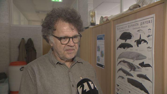 Gísli Víkingsson, hvalasérfræðingur