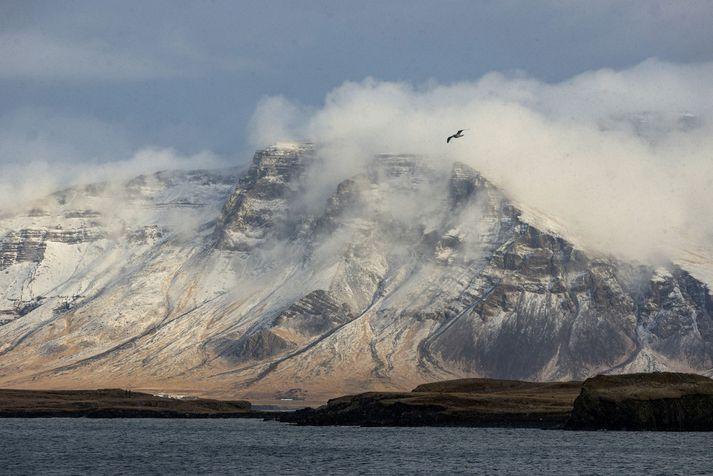 Veðrið í dag verður svipað og undanfarna daga en á morgun snýst til suðlægari átta með snjókomu í öllum landshlutum og hlýnandi veðri sunnantil.