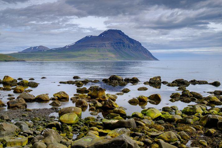 Gunnólfsvíkurfjall í Finnafirði