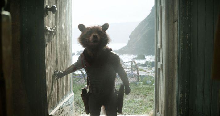 Þvottabjörninn Rocket er meðlimur Varða Vetrarbrautarinnar (e. Guardians of the Galaxy). Hann er meðal annarra hetja í eldlínunni í Avengers: Endgame.