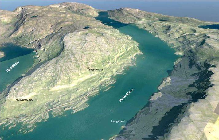 Hér sést veglínan um Teigsskóg í vestanverðum Þorskafirði.