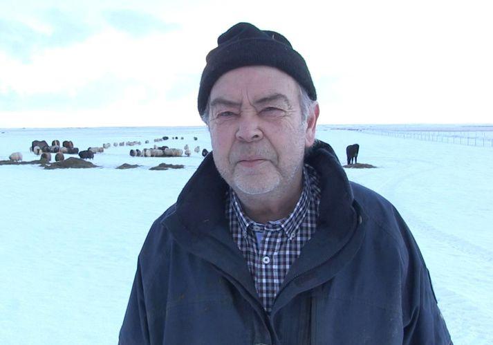 Kristinn Guðnason, sem er með um fjögur hundruð fjár á bænum Árbæjarhjáleigu í Holtum.