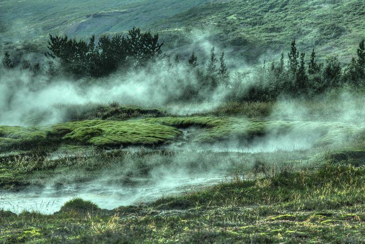 Mennirnir fimm stóðu að kannabisræktun á Suðurlandi. Myndin er tekin í Haukadal en tengist fréttinni að öðru leyti ekki.