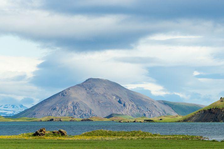Vindbelgarfjall í Mývatnssveit skartar sínu fegursta í sumar.
