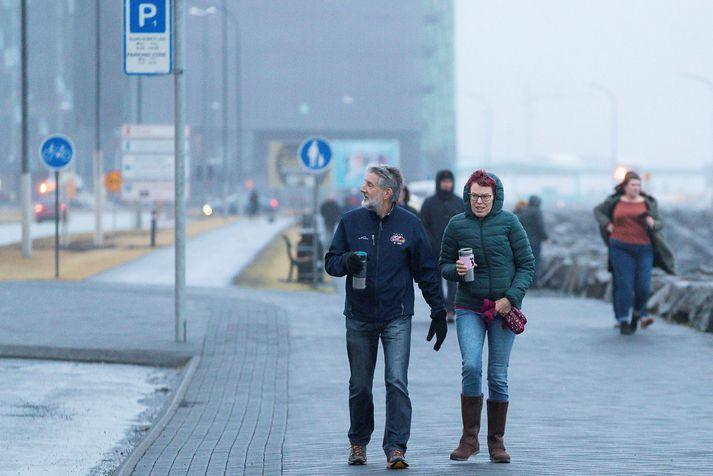 Það er útlit fyrir haustlegt veður á höfuðborgarsvæðinu í dag.