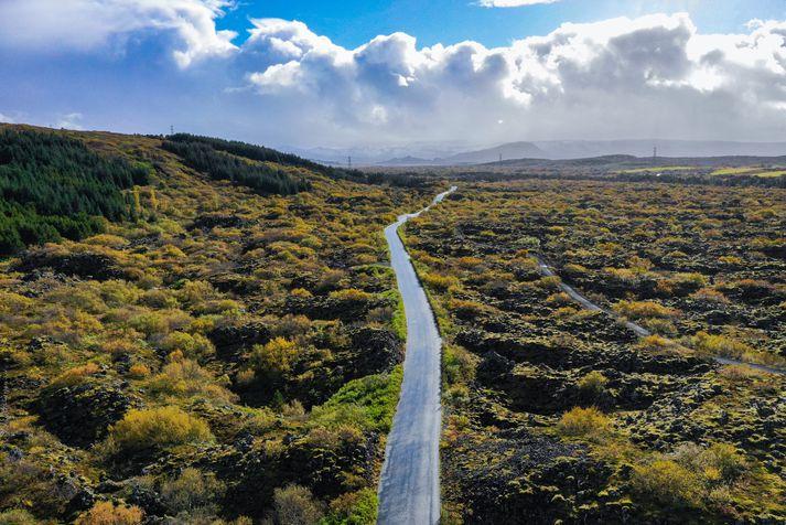 Maðurinn braut á einni konunni í bíl í Heiðmörk.