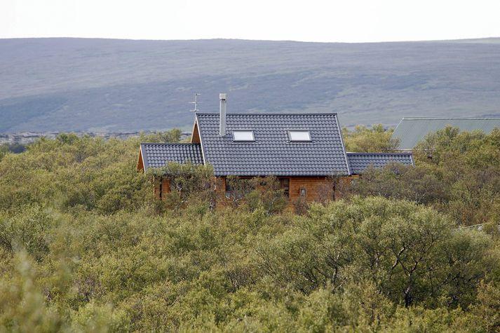 Sumarhúsaeigendur á Suðvesturlandi hafa ekki farið varhluta af faraldri lúsmýs í sumar.