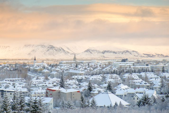 Brotin voru framin í Reykjavík í febrúar 2017.