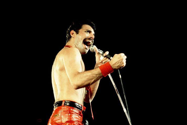 Breski tónlistarmaðurinn Freddie Mercury átti nokkuð litríka ævi.