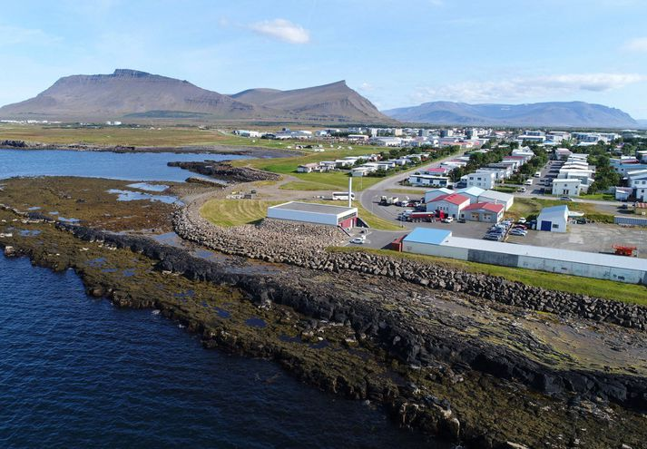 Hreinsistöðin var formlega opnuð í maí í fyrra. Erfiðlega hefur gengið að halda henni gangandi sökum mikillar fitu frá matvælavinnslu.