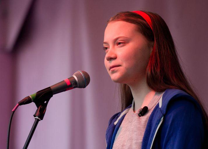 Greta Thunberg ávarpar mótmælendur í London.