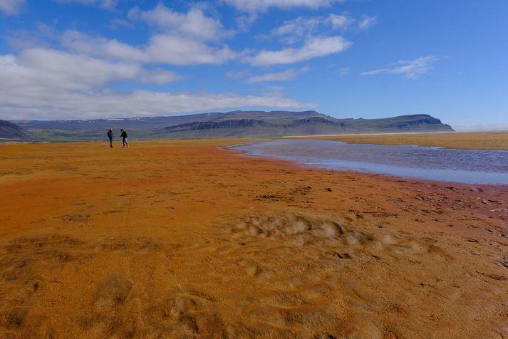 Rauðasandur er sagður tólfta fallegasta strönd Evrópu.