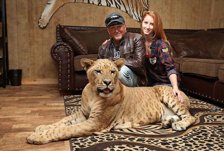 Jeff og Lauren Lowe með tígrisynjunni Faith.