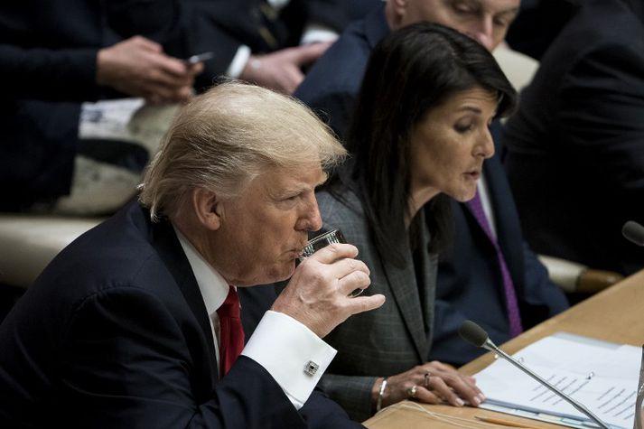 Donald Trump Bandaríkjaforseti og Nikki Haley, sendiherra Bandaríkjanna gagnvart Sameinuðu þjóðunum.