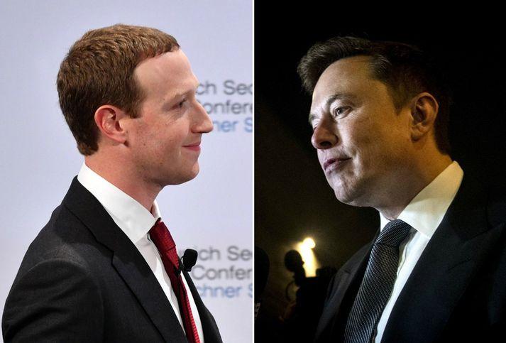 Mark Zuckerberg og Elon Musk.
