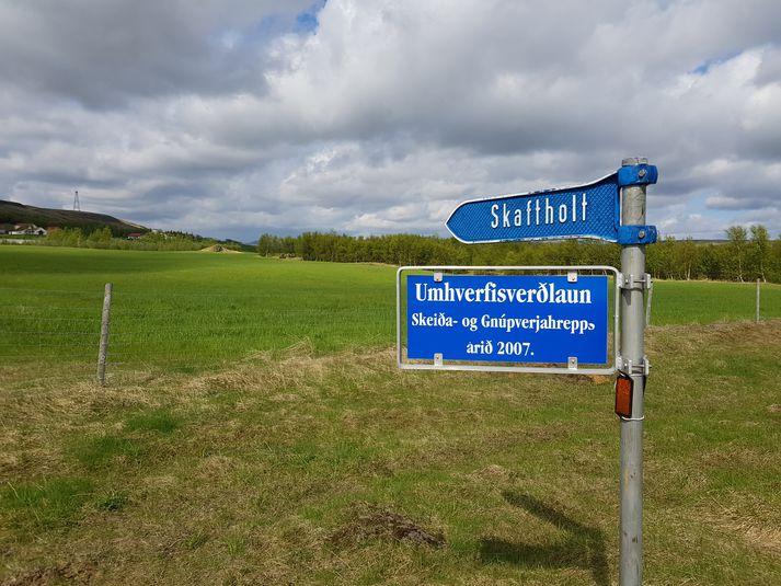 Skaftholt er þremur kílómetrum frá Árnesi á leiðinni í Þjórsárdal í Skeiða og Gnúpverjahreppi. Opinn dagur verður þar í dag frá klukkan 14:00 til 17:00.