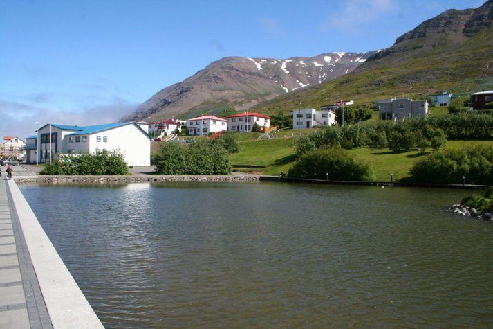 Tjörnin á Ólafsfirði.