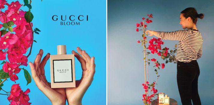 Auglýsingin sem Anna hannaði fyrir Gucci er litrík og falleg.