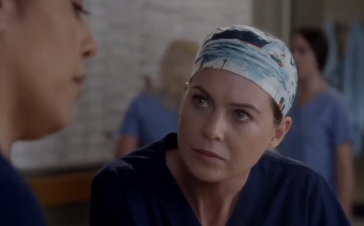 Ellen Pompeo fer með aðalhlutverkið og leikur hún Meredith Grey.