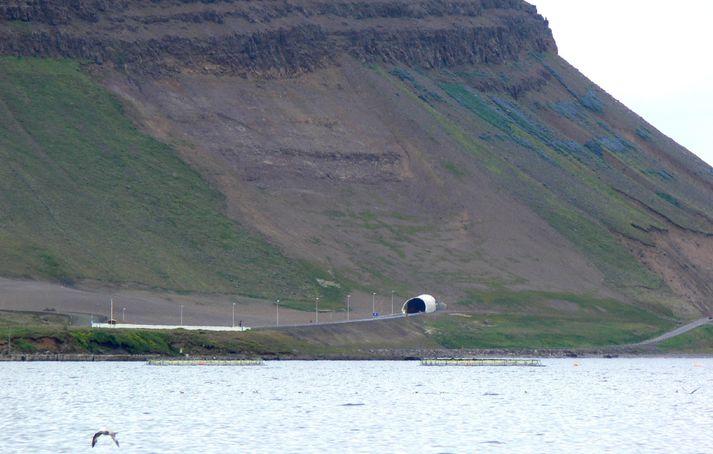 Bolungarvíkurgöng Hnífsdalsmegin. Til hægri má sjá gamla Óshlíðarveginn.