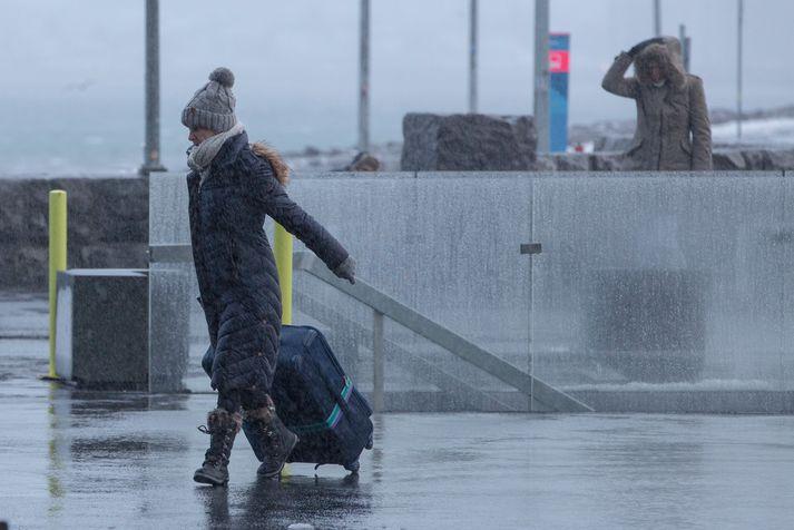 Vegir eru að mestu greiðfærir en þó er nokkur hálka á Norðaustur- og Austurlandi.