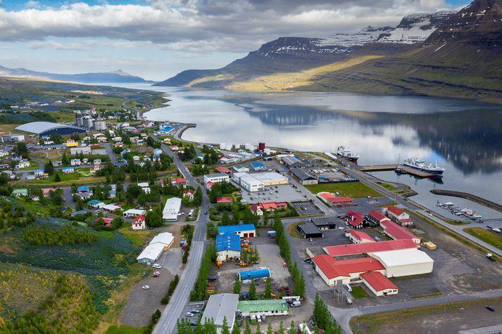 Manninum er meðal annars gefið að sök að hafa ráðist á lækni á heilsugæslunni á Reyðarfirði.