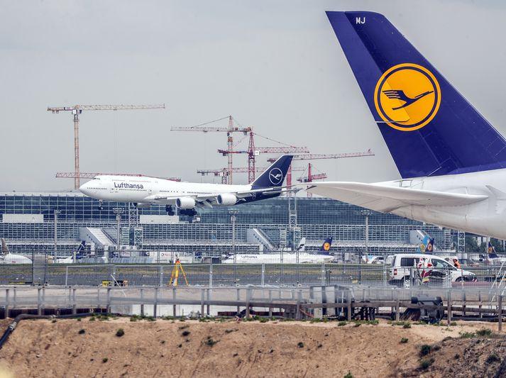 Lufthansa er strax byrjað að fljúga aftur til Kaíró eftir tímabundið hlé.