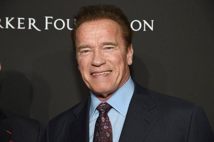 Schwarzenegger ætlar einnig að standa fyrir stórri umhverfisráðstefnu í Vín í maí.