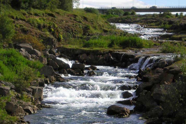 Veiðisvæðið frá Árbæjarstíflu að Ullarfaossi er ansi magnað.