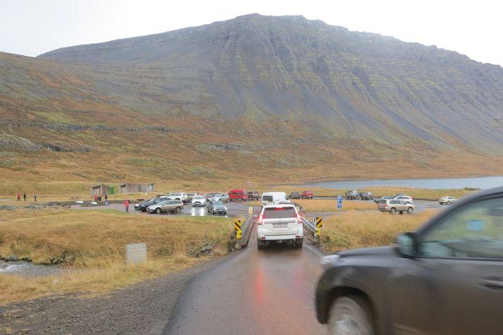 Bílarnir streymdu á bílastæðið við Dynjanda í gær. Margir voru að sjá fossinn í fyrsta sinn á þessum árstíma.