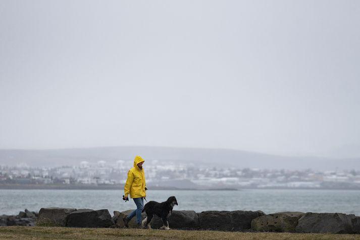 Í dag er spáð vestlægri átt, golu eða kalda, en hæg breytileg átt og síðar hafgola austan til á landinu.